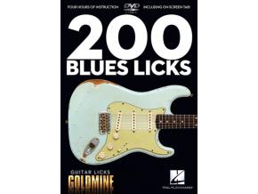 JOHN HEUSSENSTAMM - 200 Blues Licks (DVD)