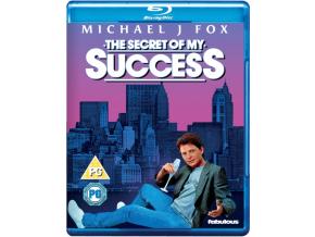 Secret Of My Success. The (Blu-ray)