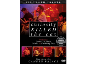 CURIOSITY KILLED THE CAT - Live From London (DVD)