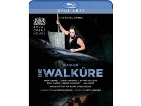 VARIOUS ARTISTS - Richard Wagner: Die Walkure (Blu-ray)
