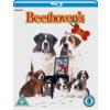 Beethoven's 2nd [Blu-ray] (Blu-ray)