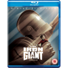 The Iron Giant: Signature Edition [2016] [Region Free] (Blu-ray)