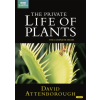 Private Life Of Plants (DVD)