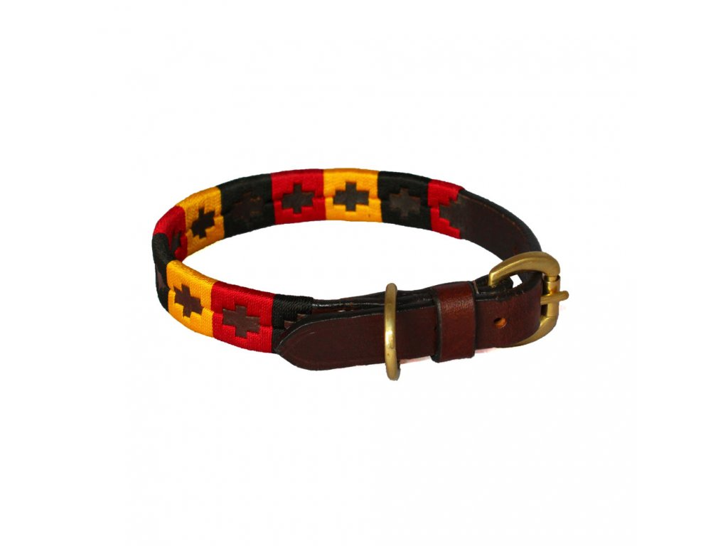 chukka dog collar 03