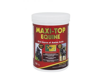 Maxi Top copy