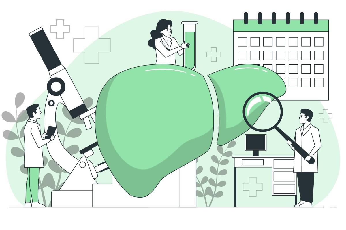 Co pomáhá na játra: ideálně upravit životosprávu a účinné bylinky