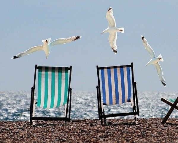 Letní dovolená - změna pracovní doby 20. 8. 2021