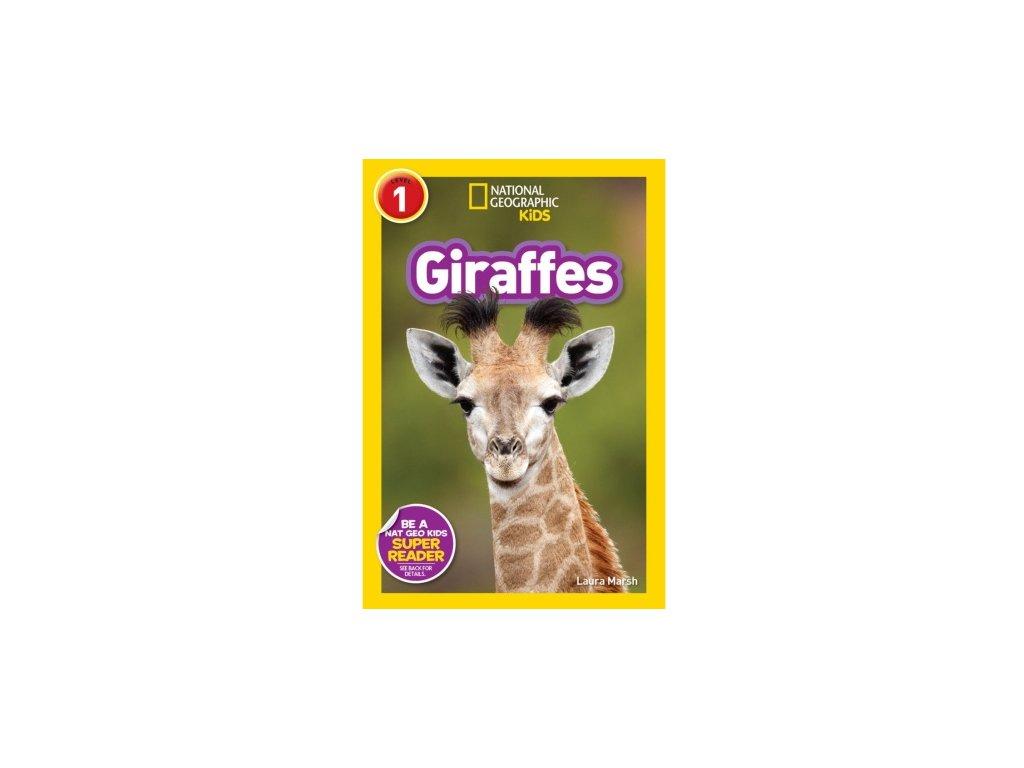 2952 giraffes level 2