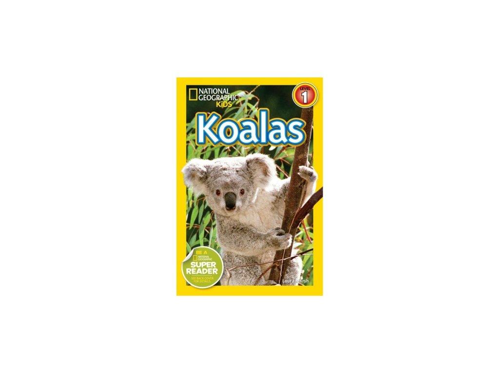 2955 koalas level 2