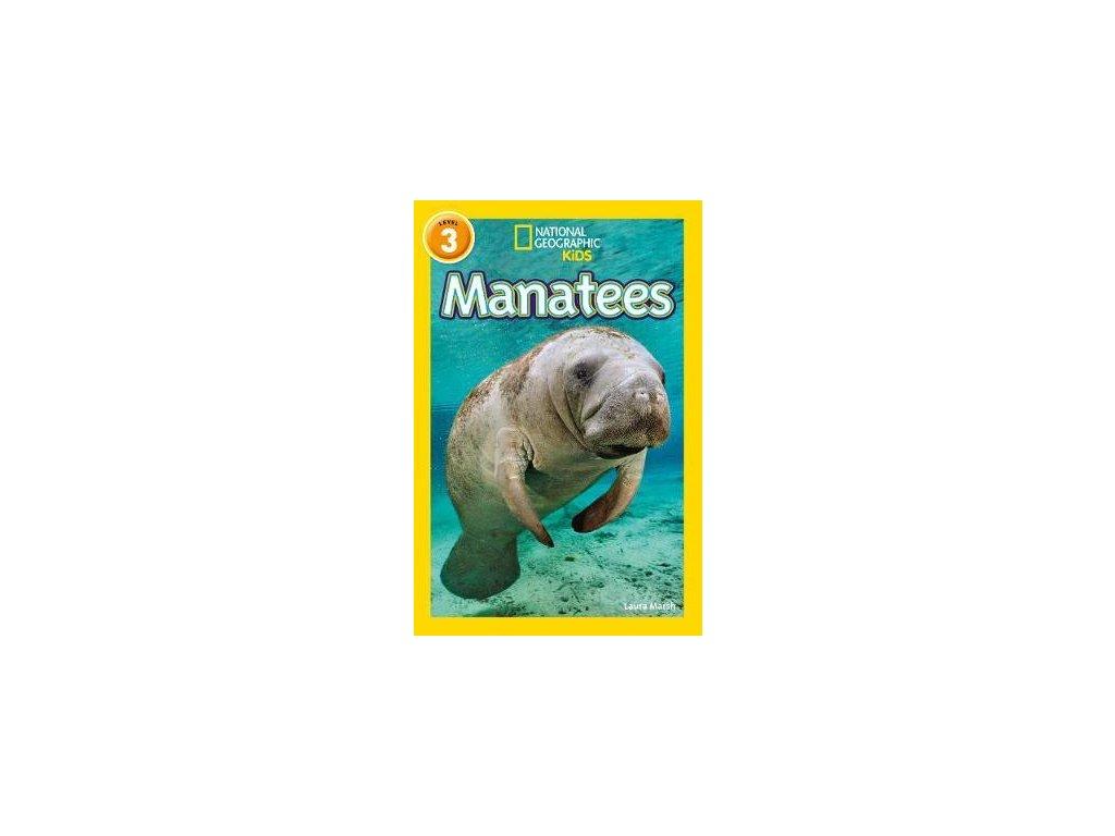2994 manatees level 3