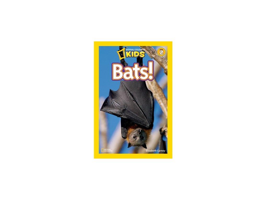 2997 bats level 3