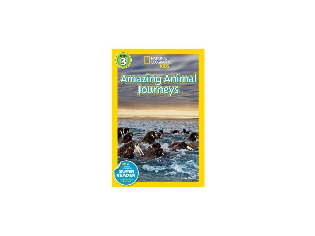 3069 amazing animal journeys level 4