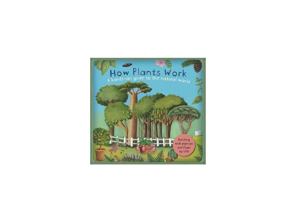 3678 how plants work