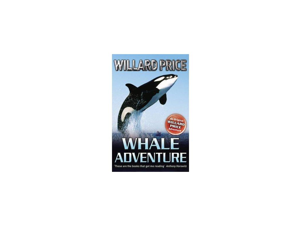 5177 whale adventure