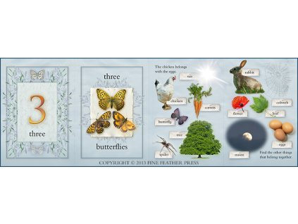 1236 123 nature activity cards