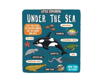 130 under the sea little explorers