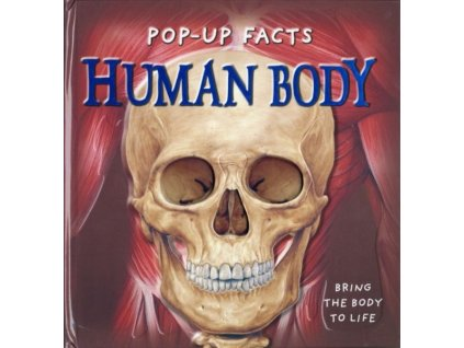 1683 human body pop up facts