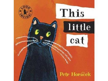 207 1 this little cat