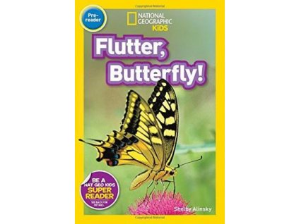 2907 flutter butterfly level 1