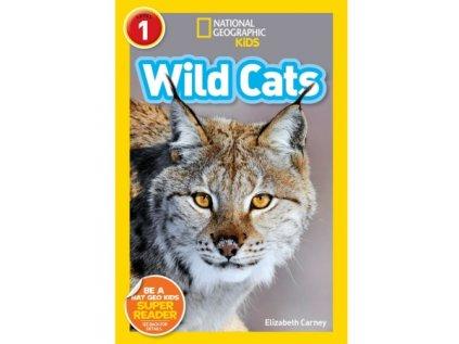 2937 wild cats level 2