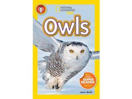 2946 owls level 2
