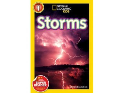 2949 storms level 2