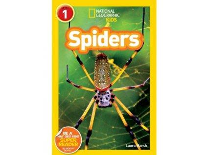 2958 spiders level 2