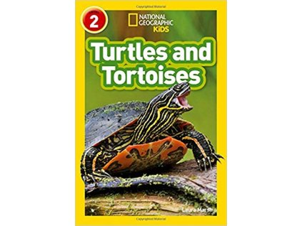 2961 turtles and tortoises level 2