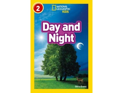 2973 new day and night level 2