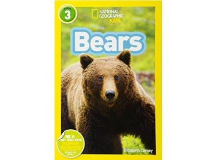 3072 bears level 4