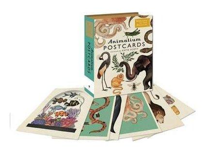 3687 postcard animalium botanicum