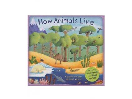 540 1 how animals live
