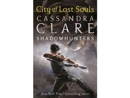 5480 the mortal instruments 5 city of lost souls
