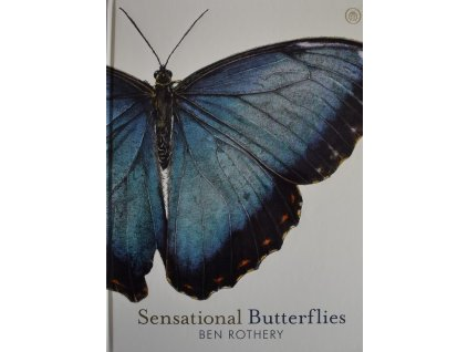Sensational Butterflies