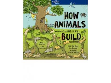 936 1 how animals build
