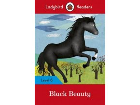 1389 black beauty