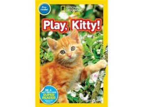 2916 play kitty level 1