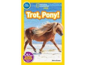 2922 trot pony level 1