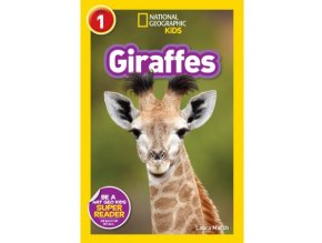 2952 giraffes level 2
