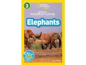 3054 elephants level 4