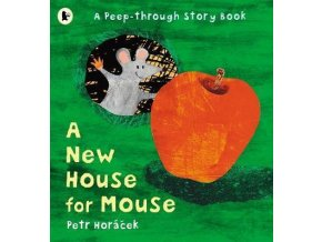 3162 a new house for mouse