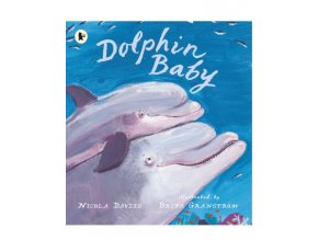 879 3 dolphin baby