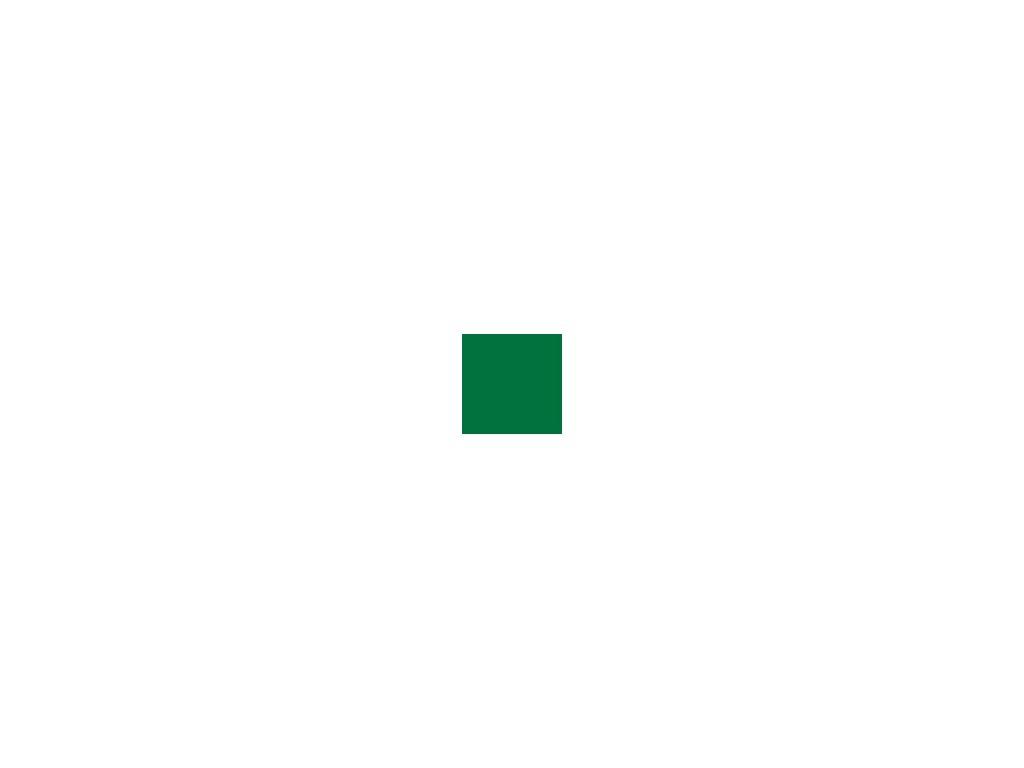 Akrylová barva Polycolor - Chrome oxid zelená 20 ml