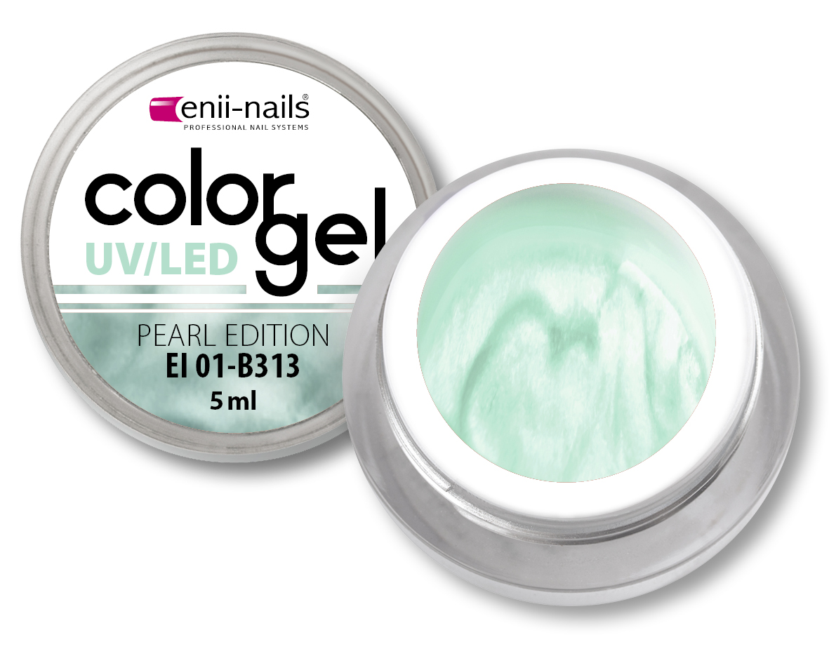ENII-NAILS Barevný UV/LED gel 5 ml č.313