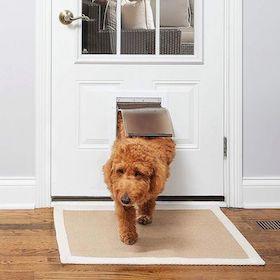 Prechodné dvierka pre psov