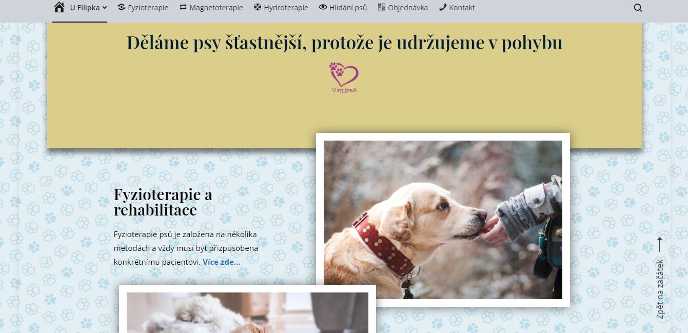 Fyzioterapie psů Olomouc