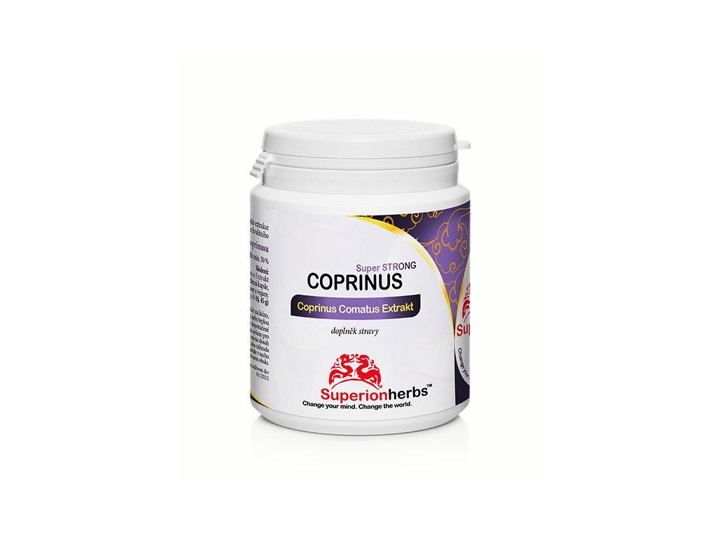 coprinus 1[1]