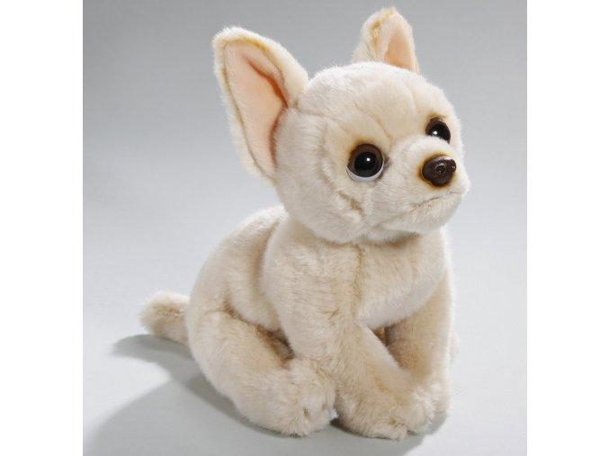 Plüss kutya - chihuahua 22 cm - plüss játékok