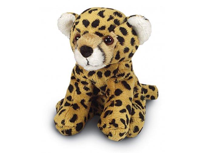 MS999 Cheetah