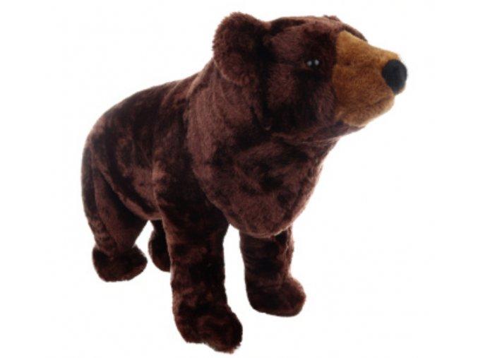 medvěd1